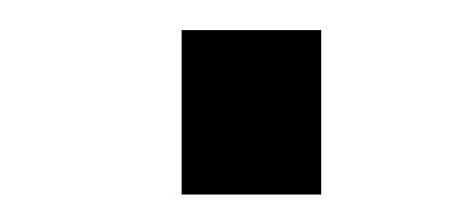 vozickar-2